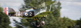 Shuttleworth's Edwardian Pageant delights