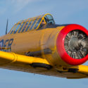 Storied Harvard for Classic Wings